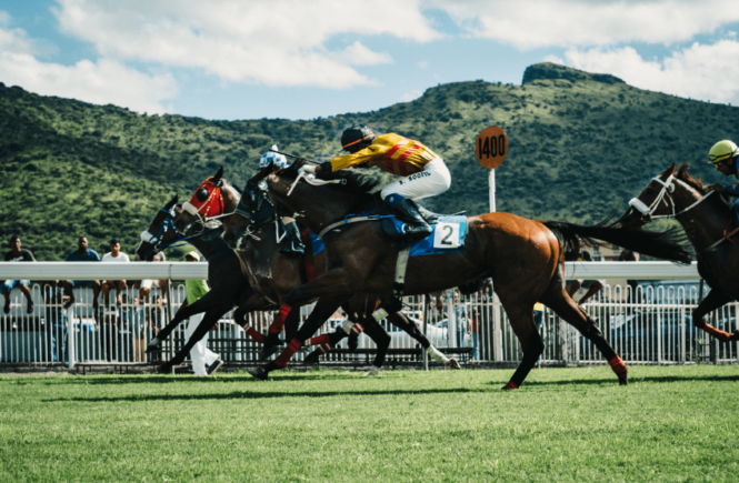 Horse Racing Betting—Tips and Tricks!
