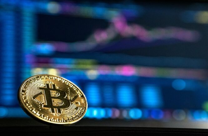 How Does Gambling With Bitcoin Work: A Beginner's Guide