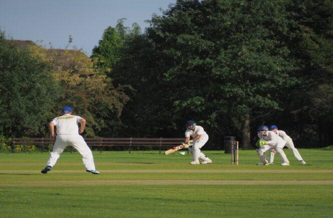 Berapa peluang IPL 2021?
